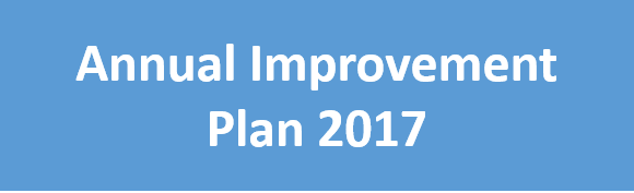 Button - Annual Improvement Plan 2017